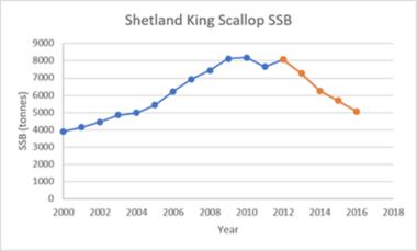 Shetland King scallops Spawning stock biomass